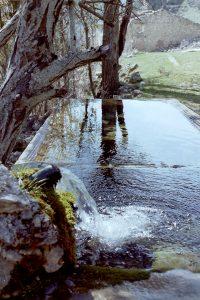 Fuente Las Canalejas